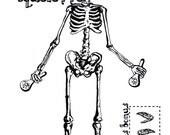 Aimant squelette mexicain à animer + 2 badges