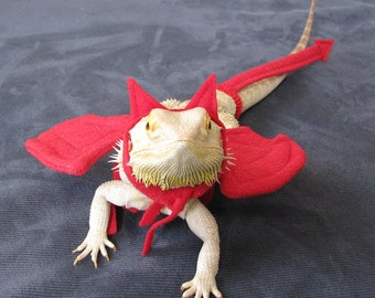 Devil Costume for Bearded Dragons! One size, adjustable