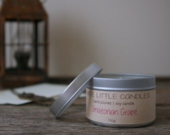 Scented 4oz Tin Soy Candle - Hand Poured - Clear Lid
