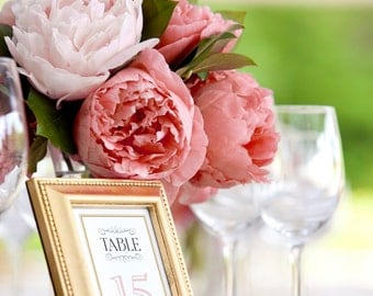 Printable Wedding Table Numbers 1-20 -- Vintage Inspired, Mixed Fonts, Blush Pink, Gold