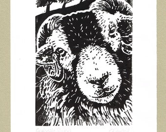 Swaledale Sheep - Linocut Original hand-pulled Relief Print