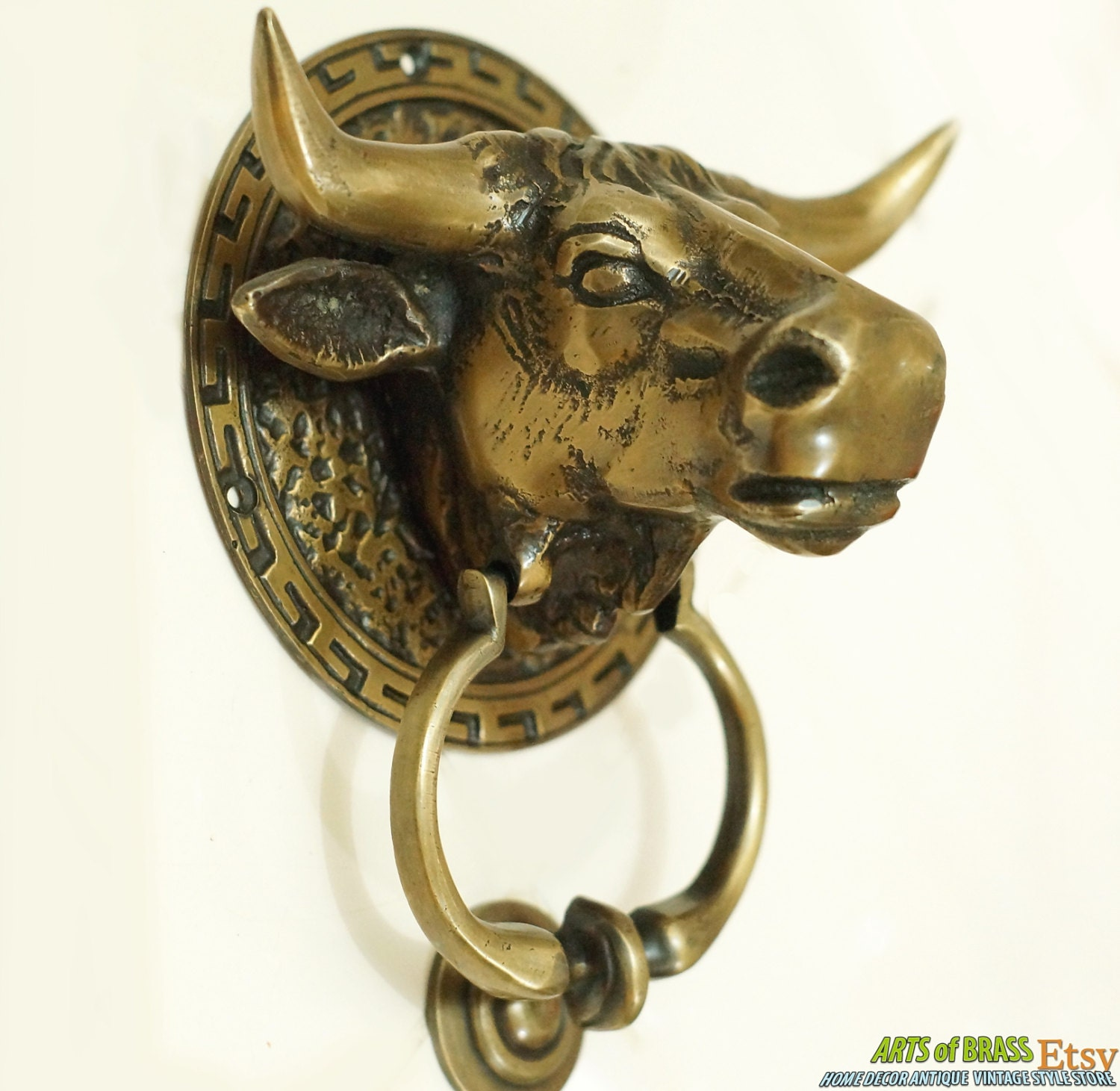 Inches Antique Large BIG Buffalo COW BULL Head Hunt