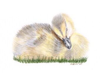 Duck Art, Duckling Watercolor, Baby Duckling, Woodland Nursery Art, Duck Print, Duckling Art, Woodland Nursery Wall Art, Yellow - 11x14