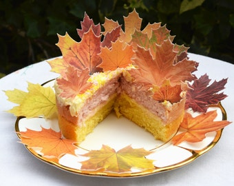 Edible Maple Leaves Autumn Fall x 14 Rustic Orange Wedding Cake Decorations Wafer Rice Paper Boho Leaf Cupcake Toppers Thanksgiving Cookie