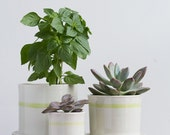 Medium Striped Porcelain Planter with Attached Tray and Drainage Hole