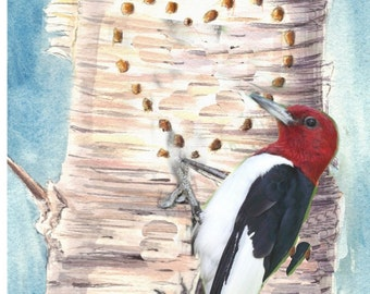 Initials Name Carved on Tree Woodpecker Custom Painting Valentine  Card or Watercolor Original