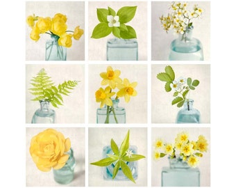 Flower Photography Set, Fine Art Prints, Wall Art Set, Green, Yellow, Aqua, Floral Wall Art, Print Set, Gallery Wall Art Set