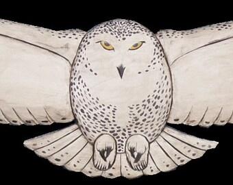 Snowy Owl, Life Size