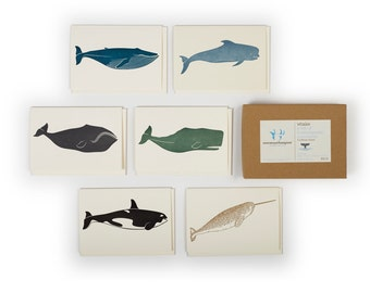 A set of 6 whale cards