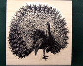 Peacock rubber stamp WM P18