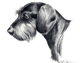 WIRE HAIRED DACHSUND Art Print Signed by Artist D J Rogers