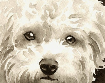 BICHON FRISE Sepia Art Print Signed by Watercolor Artist DJ Rogers