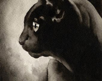 BLACK CAT Sepia Art Print Signed by Watercolor Artist DJ Rogers
