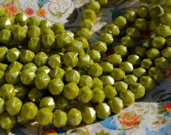 Chartreuse Green 6mm English Cut Czech Glass Beads   25