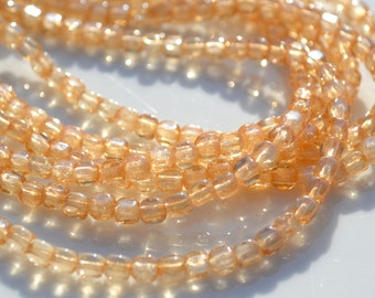 Luster Champagne 4mm Cube Beads  100