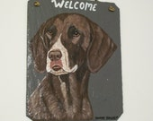German Shorthair Pointer Welcome Slate no.2
