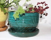 Hand Thrown Planter in Jade Green Glazed Stoneware About Six Inch Top Diameter for Indoor Gardening