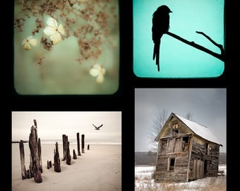 Print Set SPECIAL- Any four 5x7 or 5x5 prints, signed and dated.