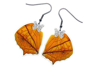 Real Butterfly Wing Earrings (Vindula Hindwing - E043)