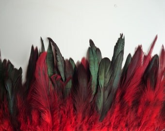 VOGUE Iridescent  Coque Tail , Red and black tips / 247