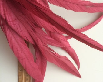 COQUE TAIL Feathers Loose  XLong /  Raspberry Red / 1111 - R