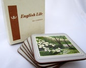 Vintage Flowering Dogwood 6 English Life Coasters England Cork Silver Trim Original Box