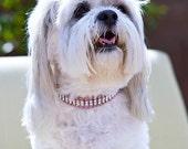 Swarovski Crystal Rhinestone Dog Collar - 4 Row Rose/Clear on Pink - 14 Inch Westie Size