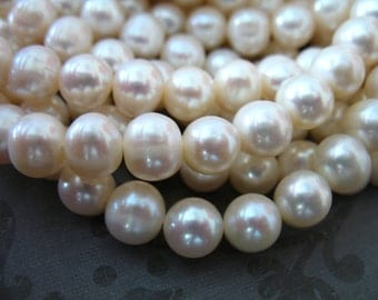 Sale.. 1/2 Strand,, WHITE Pearls, 7-8 mm, Round Loose Pearls Freshwater Pearls, Cultured Pearl, wholesale June birthstone rw pearl 788