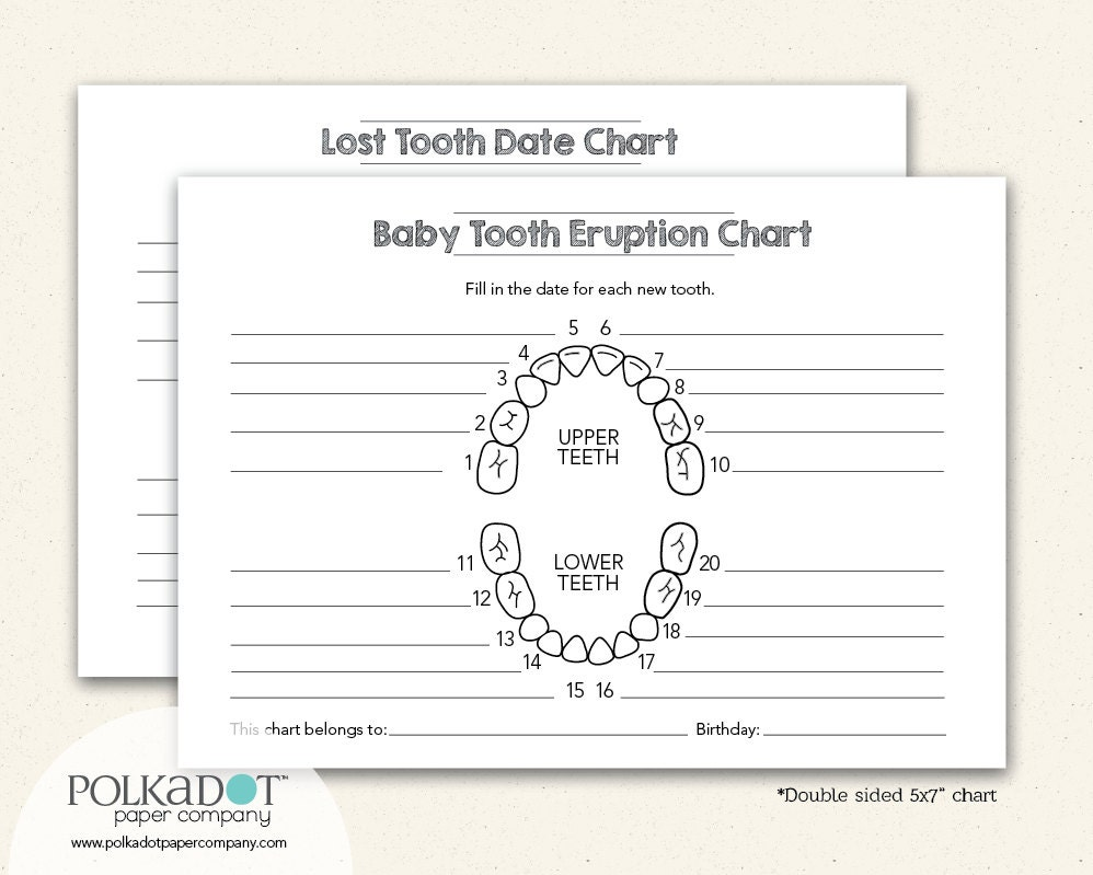 Baby teeth chart letters popular items for lost tooth on etsy