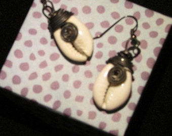 Wire Wrapped Cowrie Shell  Earrings