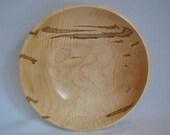 Large Ambrosia Curly Maple 589  Free Shipping USA