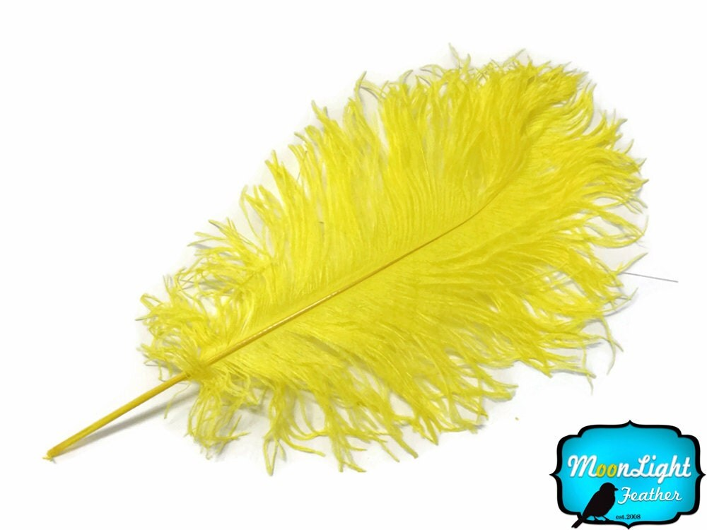 Ostrich feathers lb yellow tail wholesale