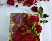 Dried Miniarure Red Roses, Gift Box of Roses, Dried Roses, Romantic Gift, Free Giftwrap, Wedding Confetti, Centerpieces, 10 Dried Red Roses