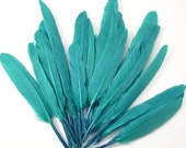 Middling Duck Quills, Stiff loose feathers - Emerald (20pcs)