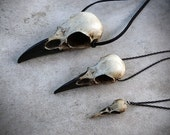 Raven Skull Trio: Bird Skull Necklace Set (Save 10%) Cast Resin Replica Raven Magpie Crow Poe Steampunk Gift Idea Zombie Gift
