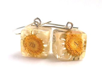 Daisy Resin Earrings.  Real Flower Resin Earrings. Yellow Pressed Flower Earrings.  Handmade Jewelry with Real Flowers - Daisy.Gardener Gift