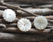 10pcs White Mother of Pearl Flowers, Carved Shell Flowers 12mm, Flat back- (V1175)