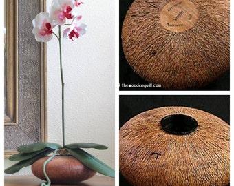 Handmade Home Decor Ikebana Beechwood Flower Vessel with White Silk Orchid