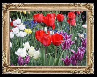 Sweet Flowers Miniature Dollhouse Art Picture 6748