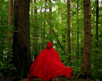 Red Riding Hood, Fine Art Photograph, 4x6, Print, Wolf, Red Cape, Forrest, Adventure, Once Upon a Time, Fairy Tale, Suspense, Wall Decor Art
