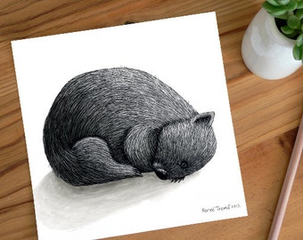 A Very Tired Wombat Sleeping - ECO Limited Edition Archival Print