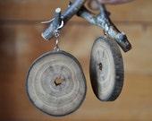 Dangle earrings ~ natural walnut wooden earrings