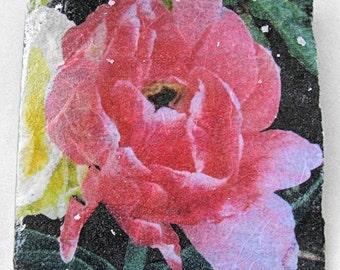 Bright Rose Ceramic Tile