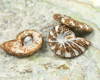 Metal Buttons - Ammonite White Rust Color Metal Shank Buttons - 0.79 inch - 6 pcs