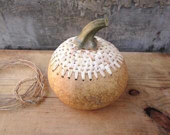 Handmade pumpkin, home decoration, natural maize foliage, table deco