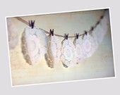 Still Life Doilie Photo 8 x 12 Vintage Doilies Photo, Garland Photo, Bunting Photo, Cream Bunting, White Vintage Doilie Photo, Doilys, Pegs