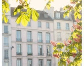 April in Paris - chestnuts in blossom on the river pastel buildings pink French wall decor 8x8, 12x12, 20x20 Original Fine Art Photography