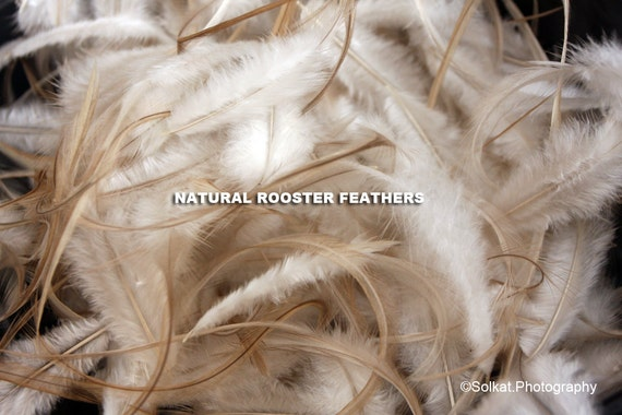 Rooster Feathers Natural Tan Honey Dunn Hackle Feather Millinery White Creme Brown Real Craft Feathers Brown Feather QTY30 4-7inch