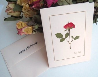 Pressed Flower - Birthday Card, Red Rose Pink Card, Happy Birthday Card With Real Pressed Flower, Happy Note Card