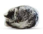 Sleeping Cat Printed Pillow